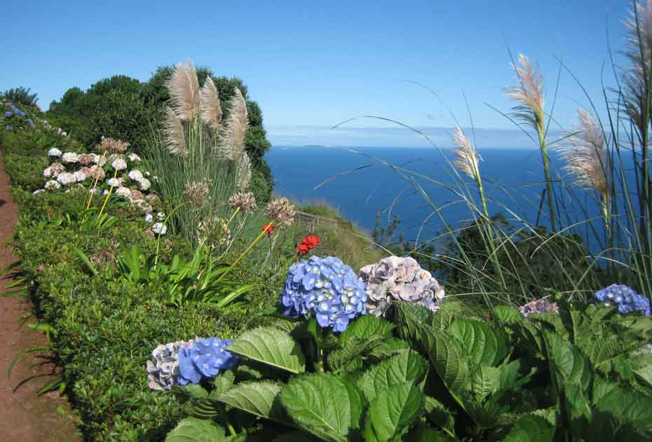 Azores, a journey through Nature
